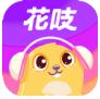花吱直播app免费版
