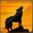 野狼视频官网app无限制版