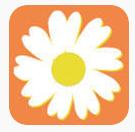 雏菊网赚app免费版