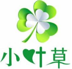 小叶草TV appv1.0安卓版