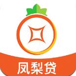 银凤梨app安卓版v1.0