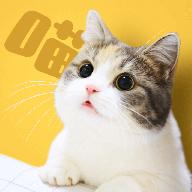 云养猫appv2.7.0安卓版