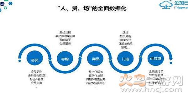 公司发展服务软件