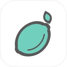青柠出行appv1.0.1手机版