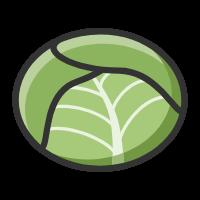 包菜�Y�app�D�l��Xv2.0.1