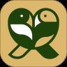 大喜小鹊appv1.0安卓版