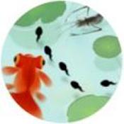 墨虾探蝌v1.0
