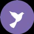 淘优平台appv1.0.0官网版