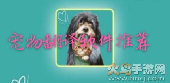 宠物翻译器软件