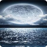 陌陌天气app安卓版v1.0.1